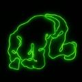 neon type E