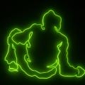 neon type Q